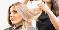 <b>Скидка до 60%.</b> Стрижка, укладка, окрашивание волос всалоне Monika