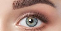 <b>Скидка до 56%.</b> Процедуры поуходу забровями иресницами, макияж встудии красоты «Бархат»