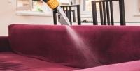<b>Скидка до 52%.</b> Химчистка дивана, матраса или коврового покрытия отхимчистки «Чистый кот»