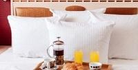 <b>Скидка до 50%.</b> Отдых вцентре Томска вномере выбранной категории сзавтраками, украшением номера или без вотеле Africa