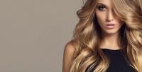 <b>Скидка до 73%.</b> Мужская, женская или детская стрижка, окрашивание, укладка, SPA-уход, кератиновое выпрямление волос всалоне красоты «Образ»