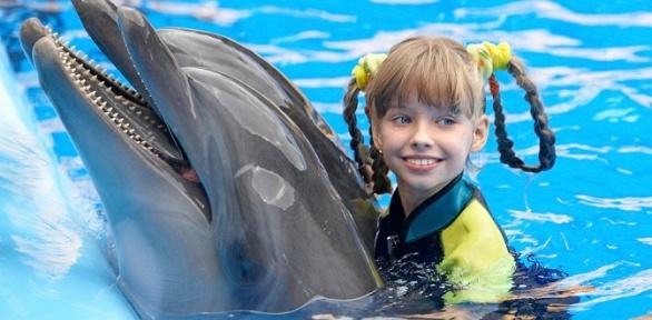 Плавание сдельфинами втечение 5или 10минут вДжубгинском дельфинарии