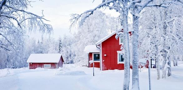Новый год или отдых набазе отдыха «Лесная сказка»