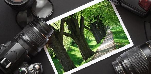 Печать фотографий разного формата нафотобумаге всалоне Gold Print