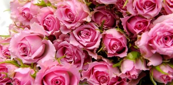 Букеты из25, 33, 51или 101 розы