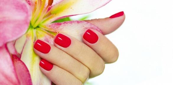 Маникюр или педикюр спокрытием либо без, наращивание ногтей в«Студии 115»