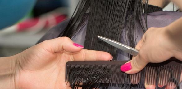 Стрижка, окрашивание волос всалоне «Жемчужина»