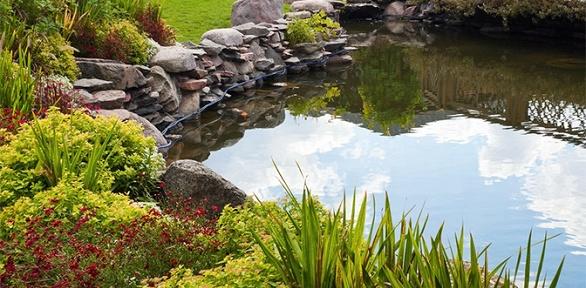 Курс обучения садово-парковому искусству или дизайну вучебном центреIQ
