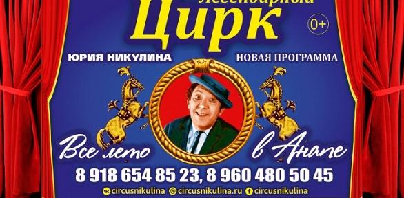 Билет на представление с участием цирка Юрия Никулина за полцены