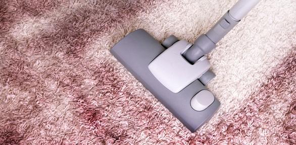 Химчистка дивана, матраца, коврового покрытия отхимчистки «Чистый кот»