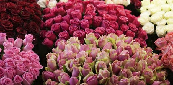 Букет изтюльпанов, кенийских или эквадорских роз