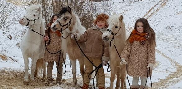 Посещение фермы миниатюрных лошадей изоопарка вкомплексе «Созидатель»