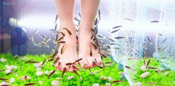 Фиш-пилинг ног ирук в«Fish-студии»