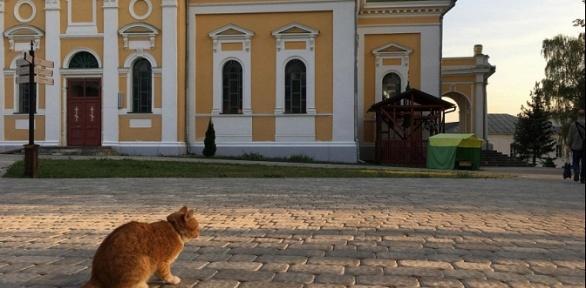 Тур «Рождество вкремле» оттуроператора «Ростиславль»