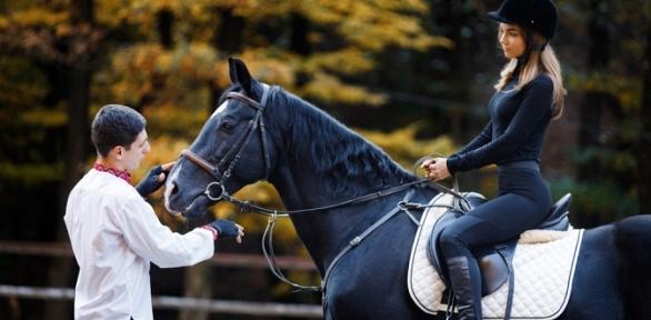Часовая конная прогулка отКСК «Кентавр»
