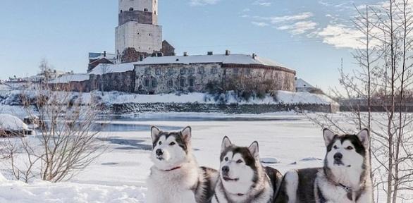 Тур «Рождество вРусской Финляндии» оттуроператора «Ростиславль»