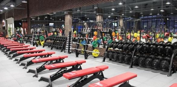 Посещение тренажерного зала вфитнес-клубе «Богатырь»