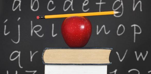 4 или 8 месяцев изучения английского языка в школе «Уникум»