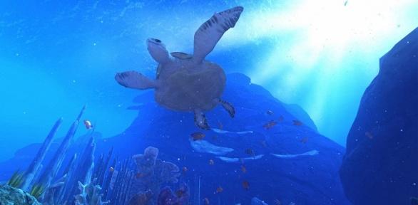 Билет наинтерактивный VR-фильм «Океанариум» вклубе «Гравитация»
