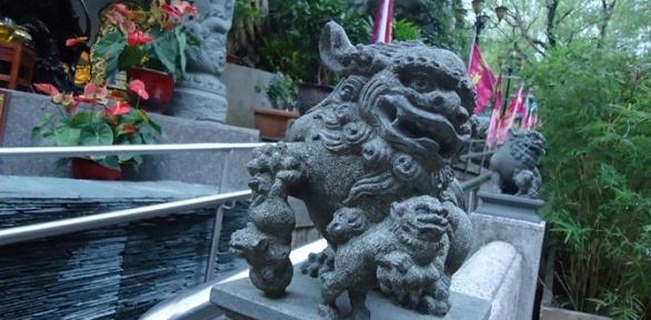 Тур вГонконг оттуроператора «Пассат Тревел»