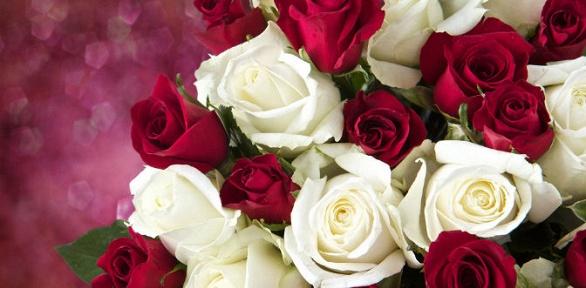 Букет изсвежесрезанных голландских роз