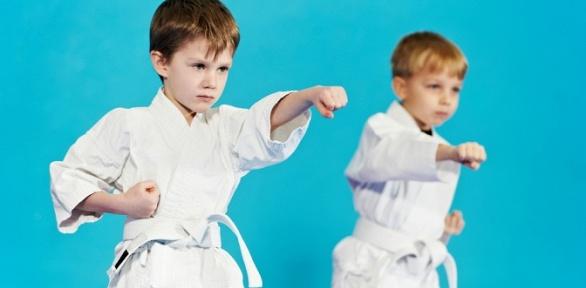 Занятия боевыми единоборствами для детей вшколе олимпийского карате WKF