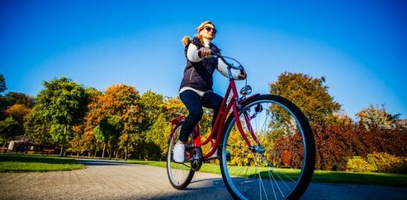 2или 3часа проката велосипедов вцентре велопроката «Динамо»