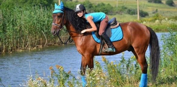 """Конная прогулка, обучение езде на лошади от клуба «Фазенда """"Третья речка""""»"""