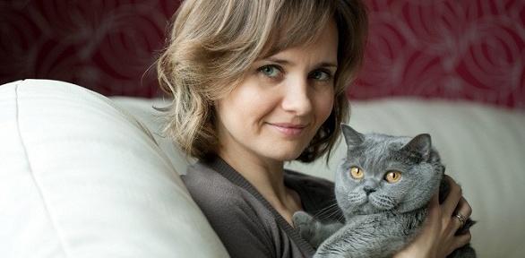 Проживание для кошки или кота вномере навыбор вкошачьем отеле TerraKot