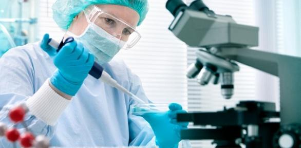 Комплексное исследование наполовые инфекции вклинике доктора Филатова