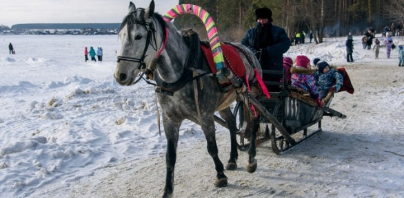 Отдых наберегу Билимбаевского водохранилища набазе «Сосновый бор»
