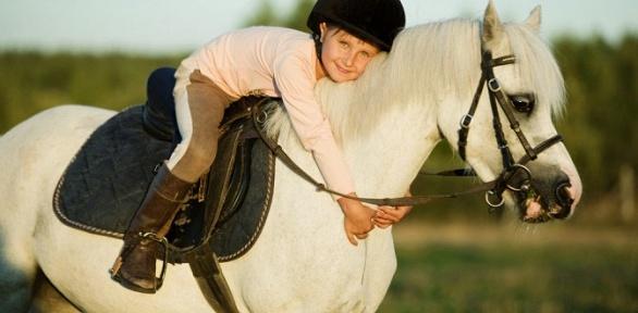 Посещение конного клуба «Золотая подкова»