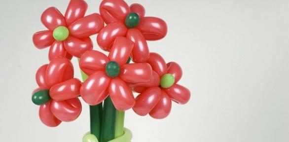 Букеты изшаров ввиде ромашек, роз, сердец ибольших цветов навыбор