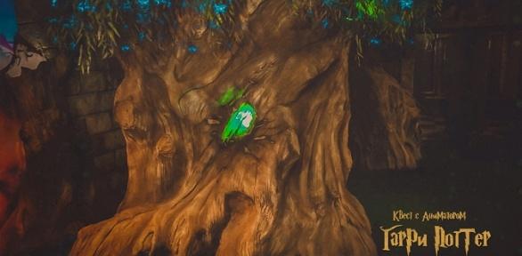 Участие вперформанс-квесте откомпании Disney Quest