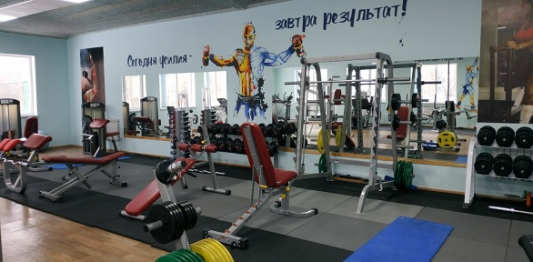 Посещение тренажерного зала вфитнес-центре «SLФитнес»