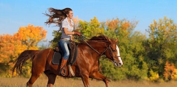 Прогулка на лошадях, занятие по верховой езде в конном дворике «Огонек»
