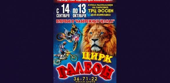 Билеты нацирковое представление отмосковского цирка «Галеон» заполцены