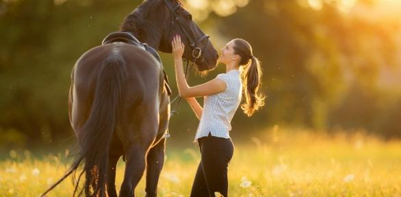 Часовая конная прогулка поэкопарку «Черное озеро» отКСК «Кентавр»