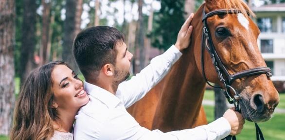 Фотосессия слошадью, конная прогулка или квест-прогулка отдвора «Хутор»