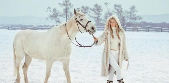 Фотосессия слошадью или конная прогулка навыбор отконного двора «Хутор»