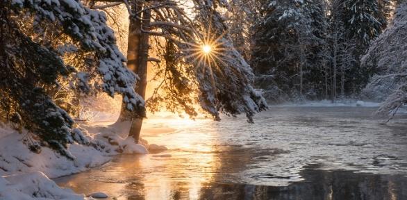 Отдых вдоме навыбор сарендой беседки набазе отдыха «Осетровский пруд»
