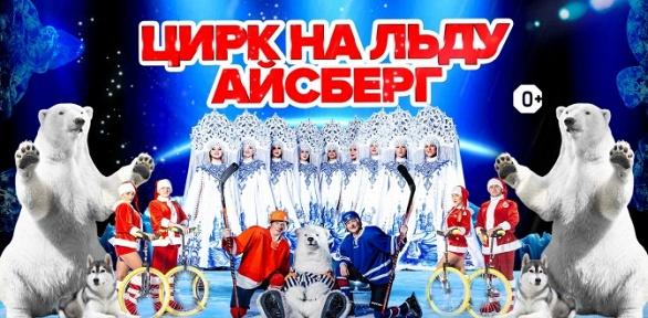 2билета нашоу «Айсберг» вПермском государственном цирке заполцены