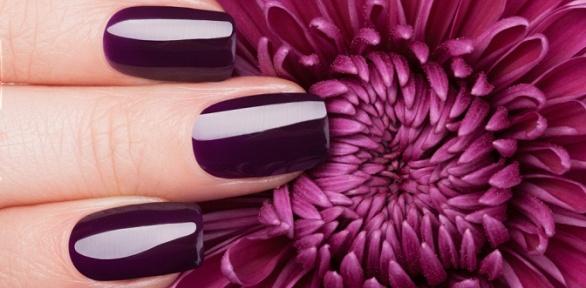 Маникюр, педикюр или наращивание ногтей всалоне красоты Niklein