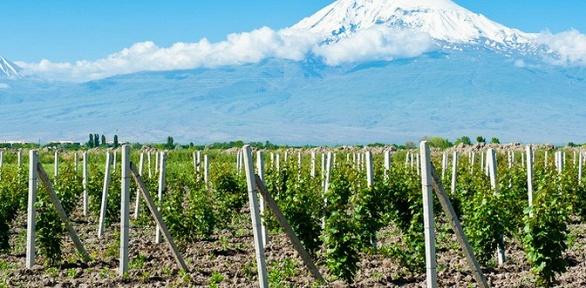 Тур в Армению от компании «Травел 2 Армения»