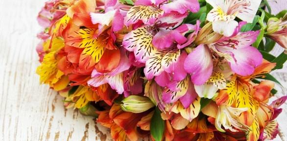 Букеты изроз, тюльпанов или альстромерий