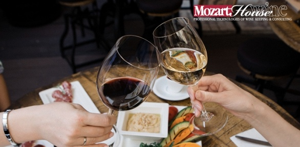 Ужин в тапас-баре Mozart Wine House