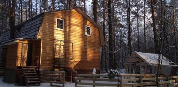 Отдых вБорском лесу набазе отдыха «Алмаз»