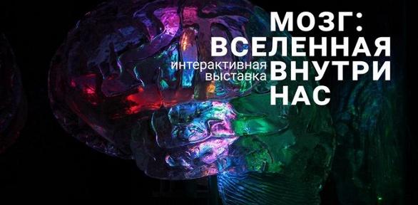Билет на выставку от компании Brainworkgroup