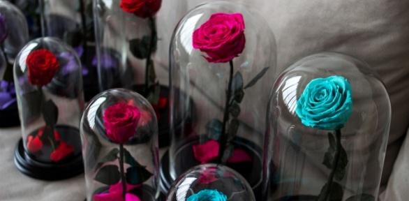 Роза вколбе сподставкой высотой 28см