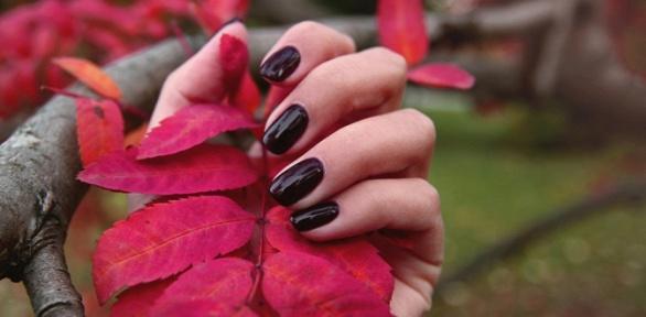Маникюр ипедикюр или наращивание ногтей в«Студии красоты»